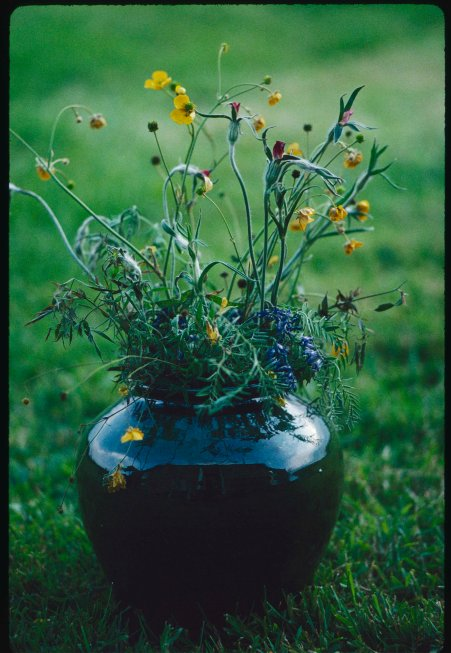 Dark glass vase of wild flowers with green grass as a background