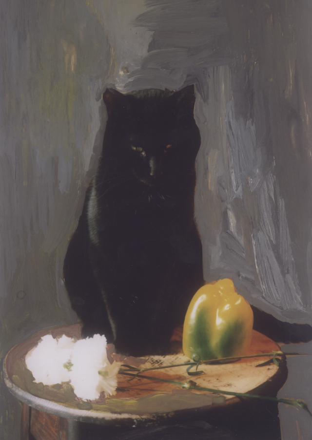 A black cat sits on a table looking down at a still life of a yellow pepper and two white carnations, the background has been painted out in warm browny greys