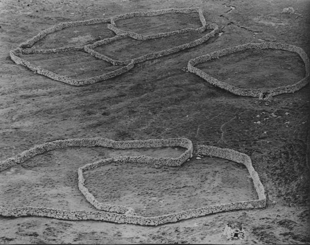 round stone walls gather in the valley of Village bay, St Kilda