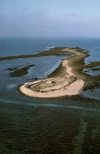 This colour areial photograph shows a small islad with a small house sitting on it. The sea surrounds a sandy rounded shoreline strewn with dark strands of seaweed. The island snakes down the length of the photograph until the 'head' of the islet with the house opens out like the palm of a hand.