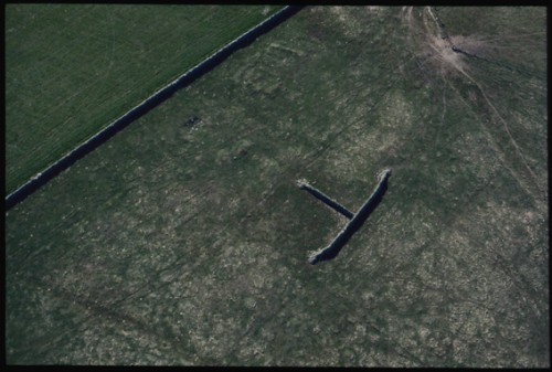 This aerial colour photograph shows an unusual stone feature, a sheep shelter of one wall butting into another wall perpendicularto it. The structure looks like a giant capital 'T' lying on its side. To the left of the frame a long low stone dyke cuts right diagonally across the top of the frame.