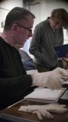 Tim wearing white gloves looking through prints