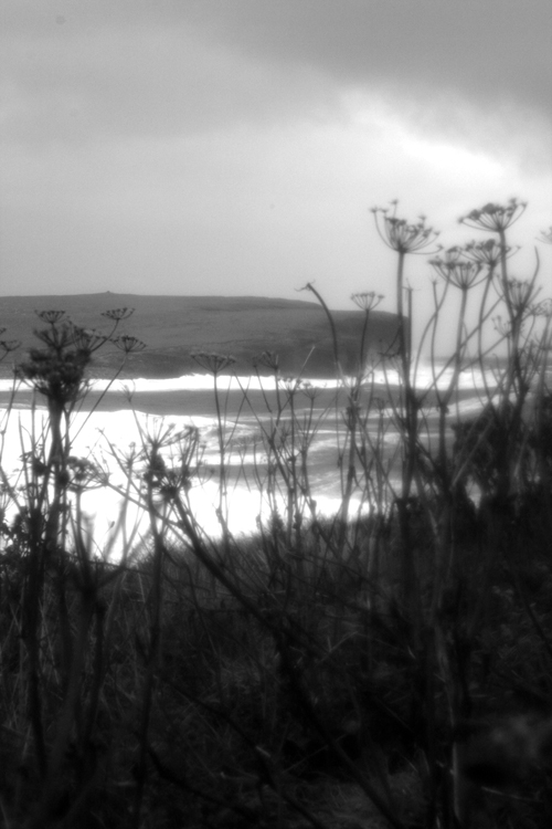 Black and white image of a white foaming sea with cow parsley shimmering in the foreground.