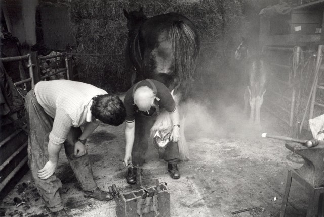 Two heads bent looking at the upturned hoof of a horse, smoke hangs about the stable from the farriers work shoeing. Through the smoke a small foal looks to her mother.