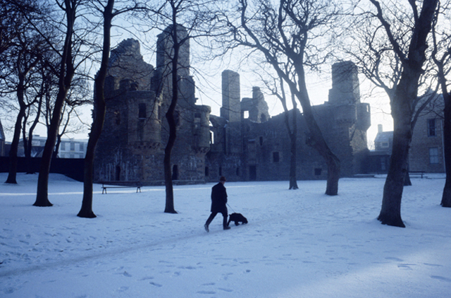 A snow covered ground fills almost all the bottom half of the frame, black tree trunks  and the black legs of a walker and his dog break in to the whiteness. Behind the trees stands the Earls Palace, a roofless but proud ruin.