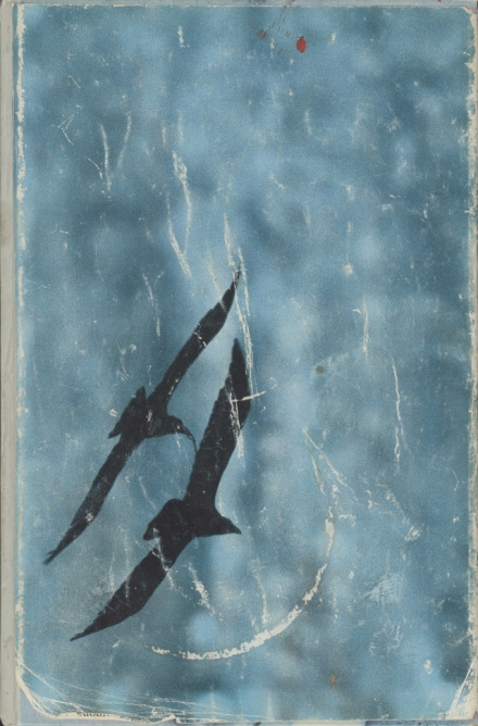 Cover of Gunnie's raven journal with drawing of ravens in flight on left hand side against marbled blue background