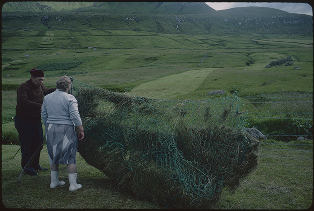 Man and wife, he in Faroese hat and she in white rubber boots, discuss the drying of the harvested grass. They stand on the left hand of the frame and the grass net and frame dominate the image. Elsewhere the green grass grows all around, strips of earlier harvests visible.