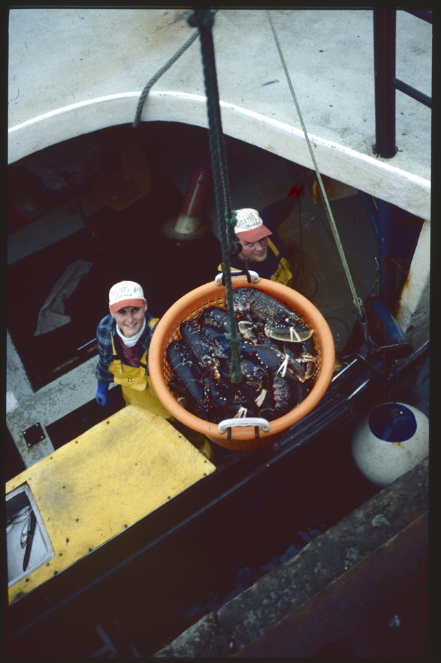 The orange circle of a full lobster basket dominates this image with a dark curve of a deck framing the two fisherfolk.