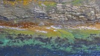 A shorelines of varied textures - slippery to solid - and colours - rusty red to sea glass green - fills the frame.
