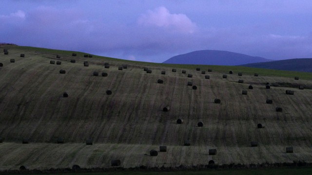 haybales dot the landscape of uphill fields and deep blue hill behind.